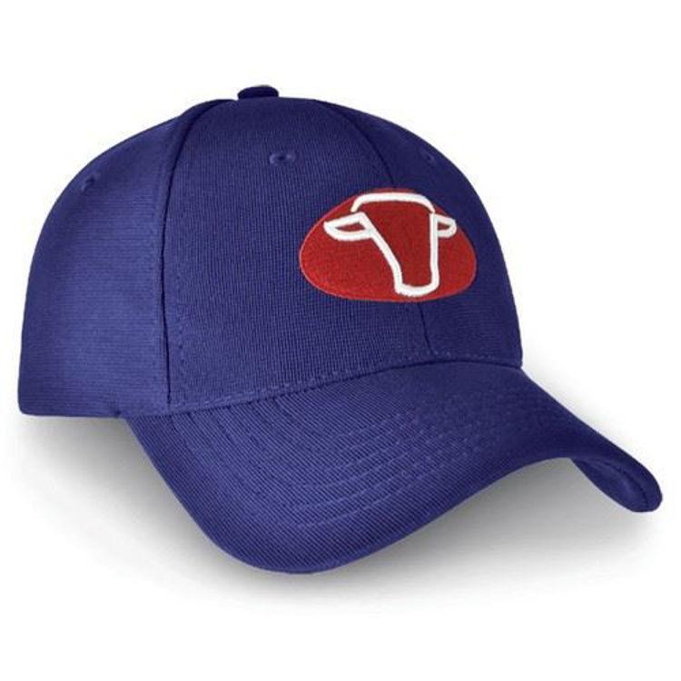 Picture of Denver Cap
